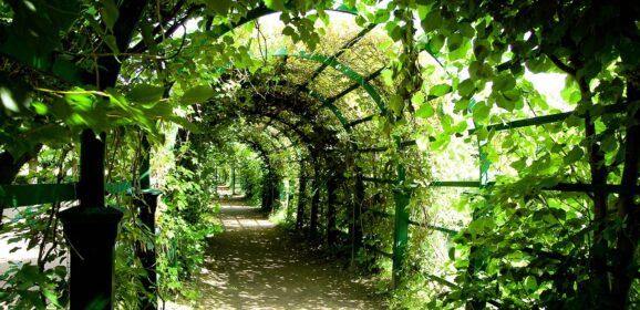 Jakie ogrody i parki warto odwiedzić we Wrocławiu? Lista najpopularniejszych miejsc!